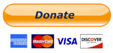 donate now paypal button