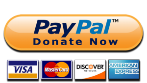 Donate now through paypal button